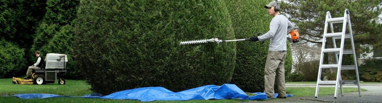 Un ouvrir jardinier entretien les espaces verts
